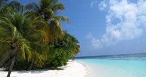 Maldiverne (Foto: Élite Diving Agency)